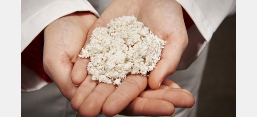 Kruger's cellulose filaments advancing toward commercial breakthroughs -  Paper Advance